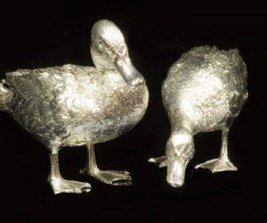 miniatuur-eenden-zonderspiegeling